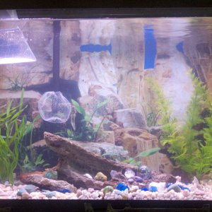 29g tuffy n familys new home.